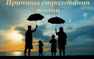 Зачем нужно страхование жизни