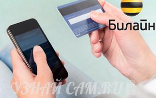 Как положить деньги на мобильный платеж билайн