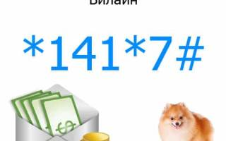 Как положить деньги в долг на билайн