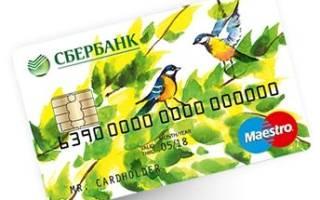 Как открыть социальную карту сбербанка